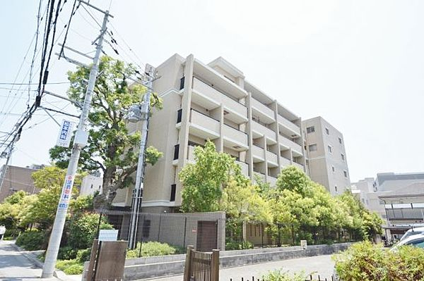 兵庫県西宮市高松町の賃貸マンションの画像