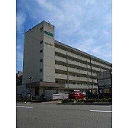 新潟昭和ビル駅南[110号室]の外観