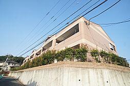 コスモガーデン和白[1階]の外観