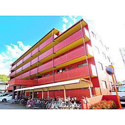 静岡県静岡市葵区籠上の賃貸マンションの外観