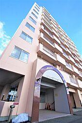 リリーマンション1号館[8階]の外観