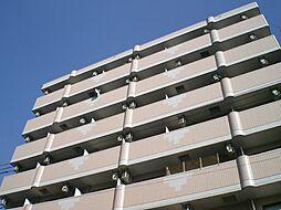 ベルフレージュ住吉[4階]の外観