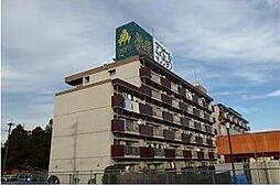 新栄二日市ハイツ[613号室]の外観