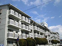 サンハイツ多井田B棟[206号室]の外観
