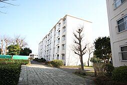 大津シーハイツB棟[502号室]の外観