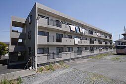 プラムマンション[2階]の外観