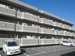 高知県高知市中秦泉寺の賃貸マンションの外観