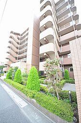 ビラ桜[6階]の外観