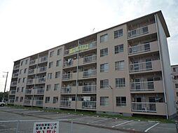 石守住宅[C12-305号室]の外観