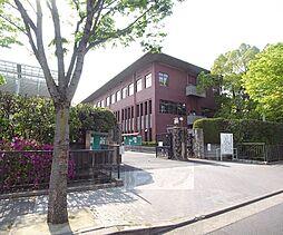[一戸建] 京都府京都市北区西賀茂鎮守菴町 の賃貸【/】の外観
