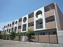 千葉県柏市永楽台1丁目の賃貸マンションの外観