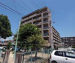 京都府宇治市莵道谷下りの賃貸マンションの外観