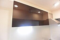グリーンロード楠葉IIのキッチン棚