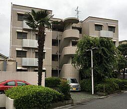 埼玉県さいたま市浦和区領家4丁目の賃貸マンションの外観