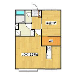 スリーエーマンション3[2階]の間取り