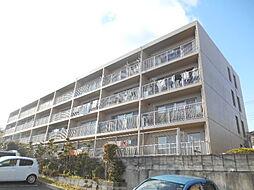 カーサ刀根山[306号室]の外観