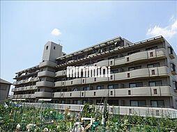パラサンピア III[4階]の外観