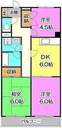 東京都練馬区富士見台3丁目の賃貸マンションの間取り