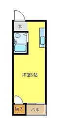 ラフィーネ3号館 1階ワンルームの間取り
