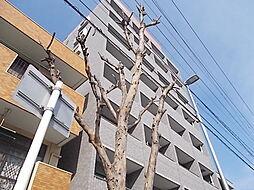 Lani Kai Park[7階]の外観