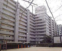 京都府京都市山科区西野阿芸沢町の賃貸マンションの外観