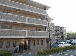 大阪府高槻市南平台3丁目の賃貸マンションの外観