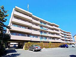 プリムローズ上福岡[4階]の外観