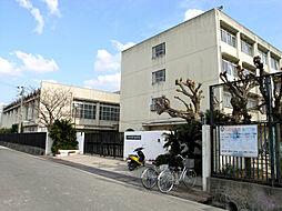 中学校曙川南中学校まで900m