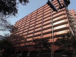 シャンボール大名D棟[10階]の外観