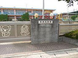 春岡幼稚園まで434m