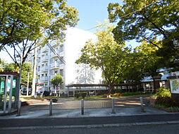UR湊駅前[50号棟 401号室号室]の外観
