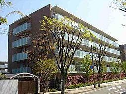 甲子園六石町ハイツ[416号室]の外観