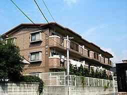 福岡県太宰府市観世音寺2丁目の賃貸マンションの外観