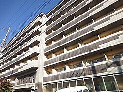 みつまめ京都[5階]の外観