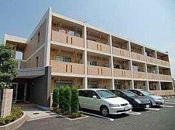 千葉県松戸市常盤平5丁目の賃貸マンションの外観