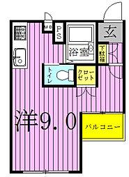 PINEARRY〜パイナリー〜[301号室]の間取り