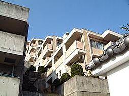 エーワイハイツ寺塚[2階]の外観