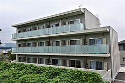 神奈川県伊勢原市下糟屋の賃貸マンションの外観