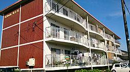 サンハイム富士見[305号室]の外観