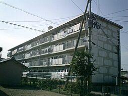 ハイツ堤下[4階]の外観
