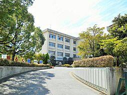 小豆坂小学校まで約450m 徒歩約6分