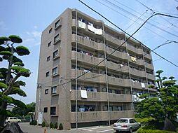 サングリーン藤沢II[6階]の外観