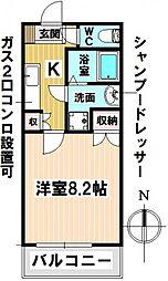 愛知県名古屋市昭和区台町2の賃貸マンションの間取り