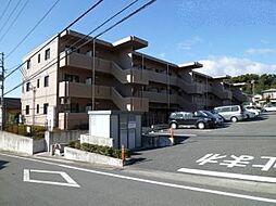 静岡県三島市富士ビレッジの賃貸マンションの外観