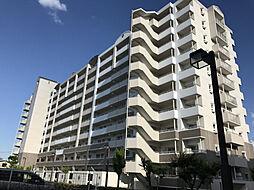 シティハイツ西宮北口[713号室]の外観