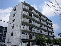 福岡県糟屋郡志免町志免3丁目の賃貸マンションの外観