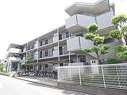 千葉県松戸市常盤平7丁目の賃貸マンションの外観