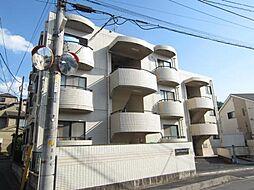 埼玉県新座市野寺3丁目の賃貸マンションの外観