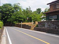 前面は平坦で道幅約6mの道路に面しております。樹々の緑が鮮やかですね。