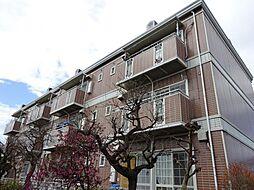 サンビレッジアサノ[3階]の外観